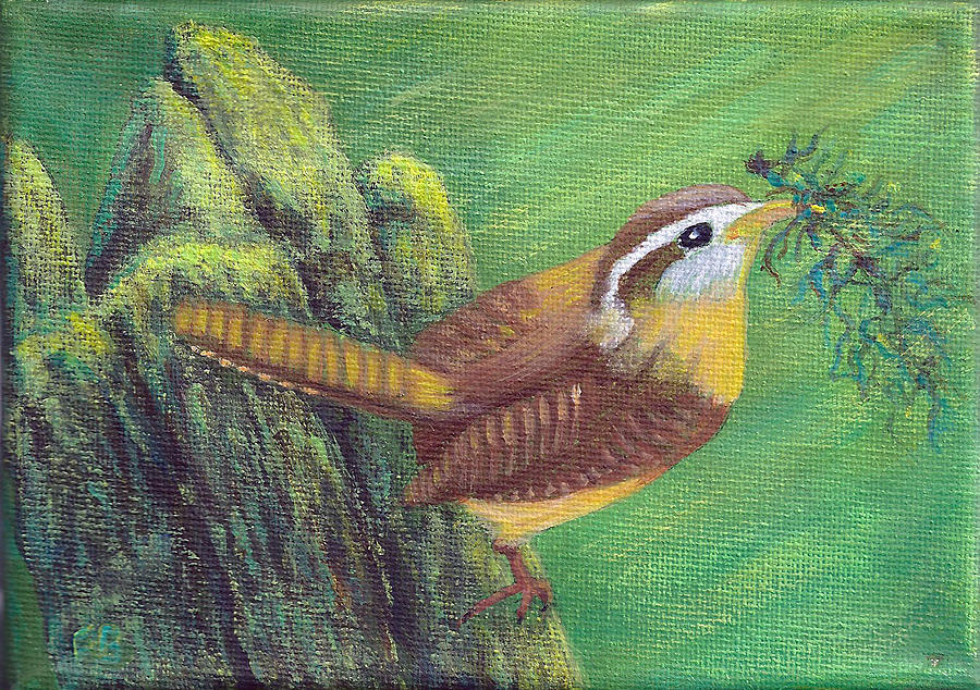 Carolina Wren Springtime by Fran Brooks