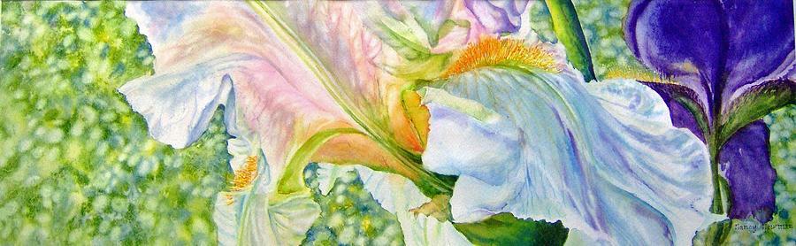 White Iris Painting - Carols-iris-i by Nancy Newman
