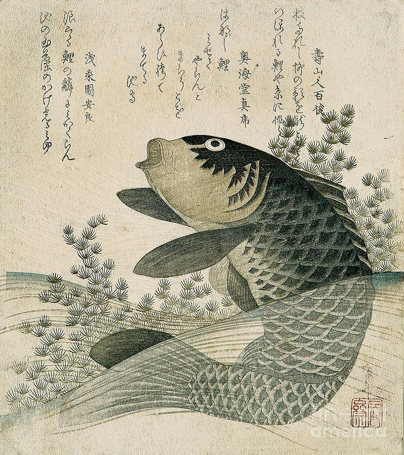 Fish Painting - Carp among pond plants by Ryuryukyo Shinsai