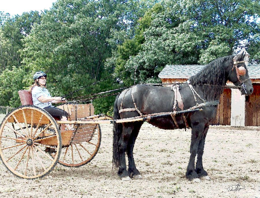 Carriage Driving Photograph - Carriage Driving by David Syers