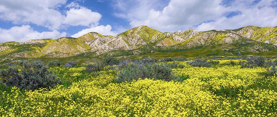 Carrizo Spring by Bjorn Burton