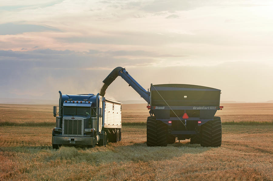 Montana Photograph - Cart Into Truck by Todd Klassy