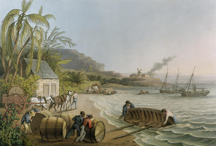 Carting Painting - Carting And Putting Sugar Hogsheads On Board by William Clark