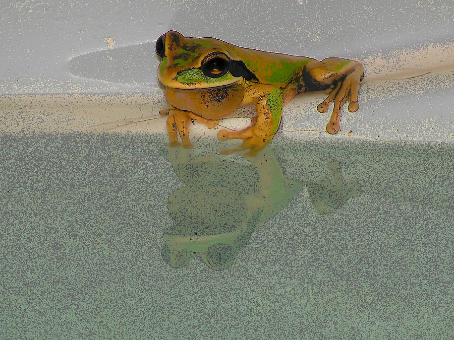 Cartoon Photograph - Cartoon Frog by William Patterson