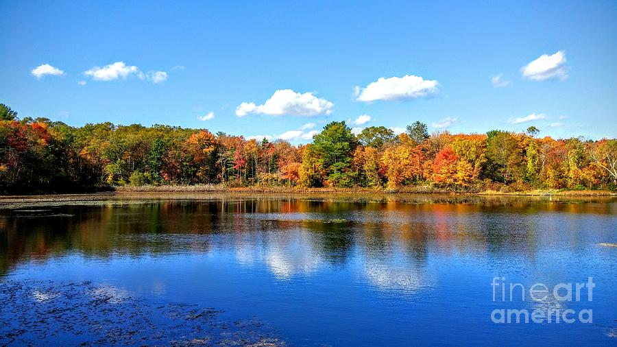 Carver Pond Bridgewater MA by Rusty Green