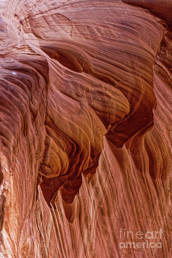 Abstract Photograph - Carved Wave. by Michael Farndell