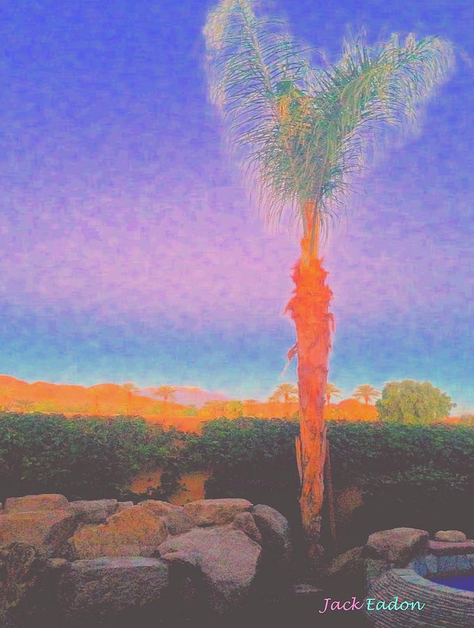 Palm Photograph - Casapaz  Palm At Dawn by Jack Eadon