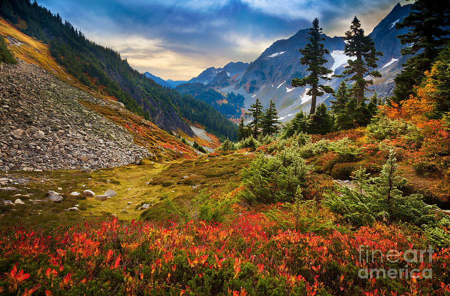 America Photograph - Cascade Pass Fall by Inge Johnsson