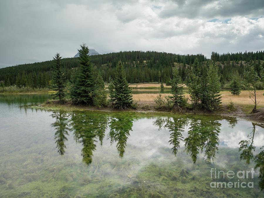 Cascade Ponds 3 by Patricia Gould