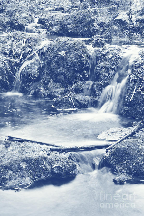 Tranquil Photograph - Cascades And Bamboos Zen Creek Scenery. Cyanotype Digital Art by Angelo DeVal