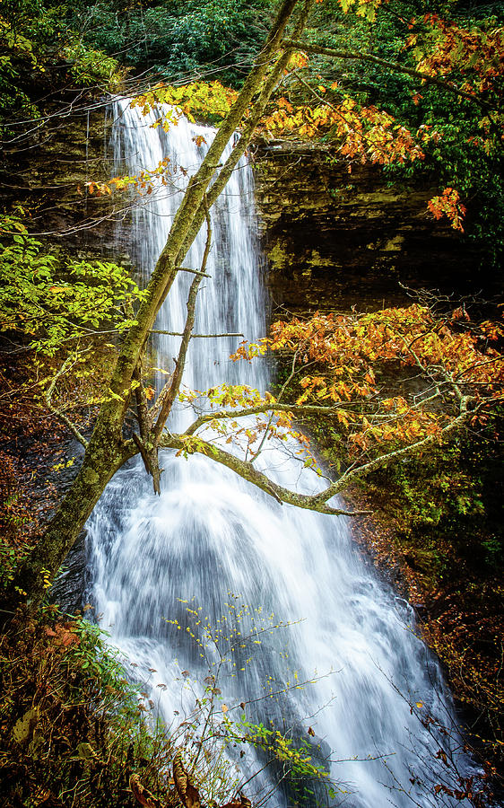 Cascades Deck View by Joe Shrader