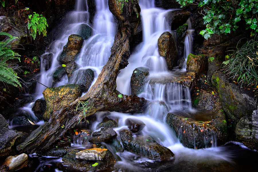 Cascades by Harry Spitz