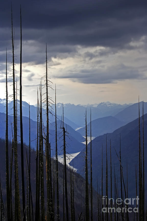 Mountains Photograph - Cascades  by Rick Mann