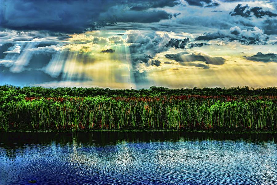 Everglades Photograph - Cascading Light by Roberto Aloi