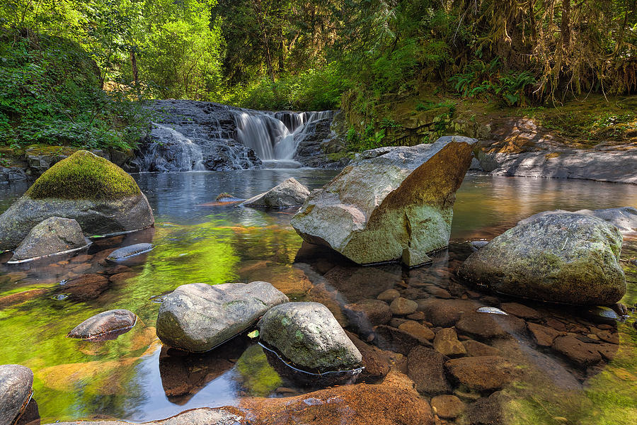 Siuslaw National Forest Photograph - Cascading Waterfall At Sweet Creek Falls Trail by David Gn