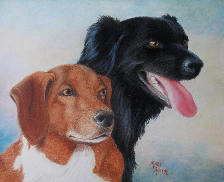 Dogs Drawing - Casey And Charlie by Mary Rogers