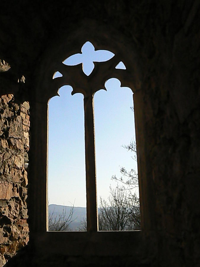 Castle Photograph - Castle  Another Window by Ron Hayes