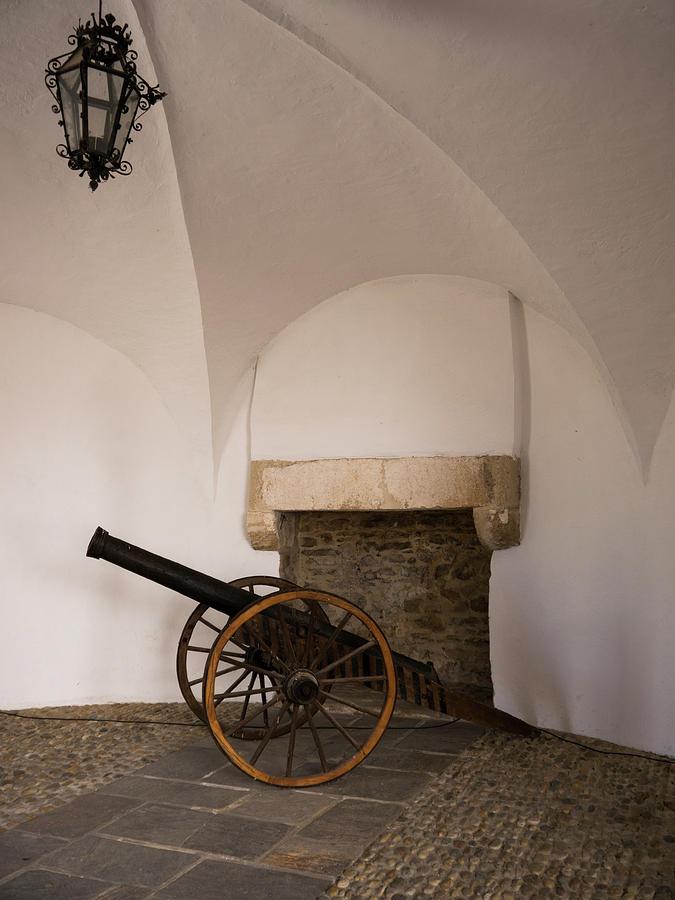 Varazdin Photograph - Castle Canon by Rae Tucker