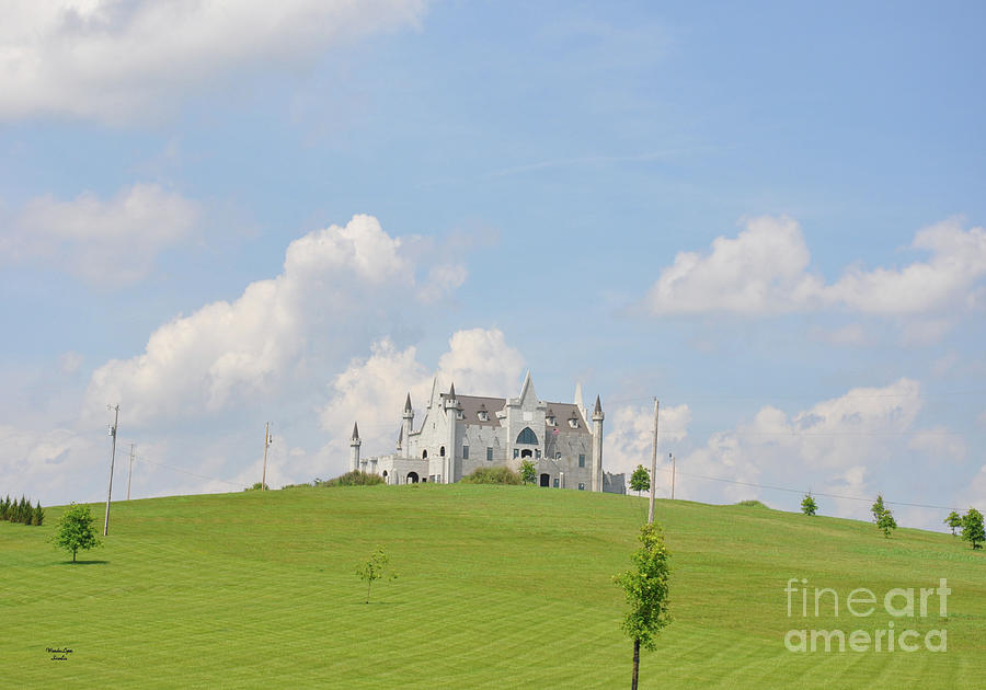 Castle on the Hill by Wanda-Lynn Searles