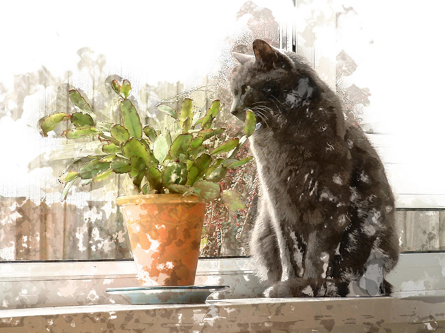 cat painting cat and cactus on window sill perch by elaine plesser