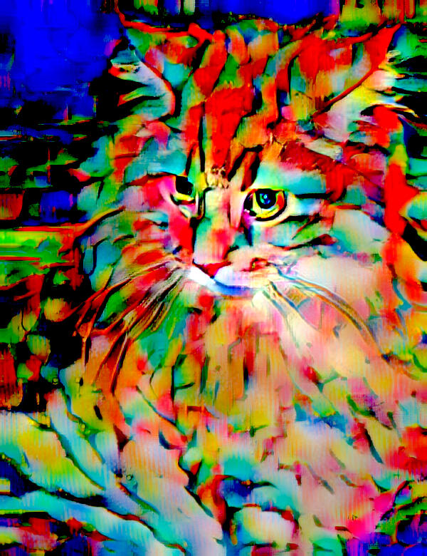 Cat Digital Art - Cat By Fauvism by Femina Photo Art By Maggie