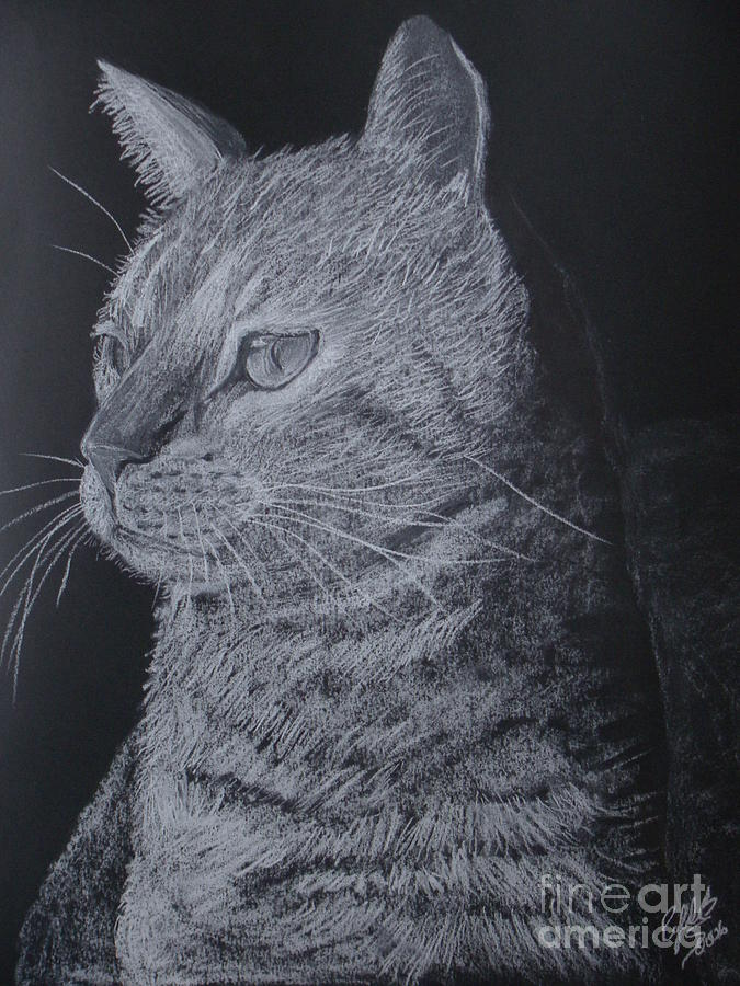 Cat Pastel - Cat by Cybele Chaves