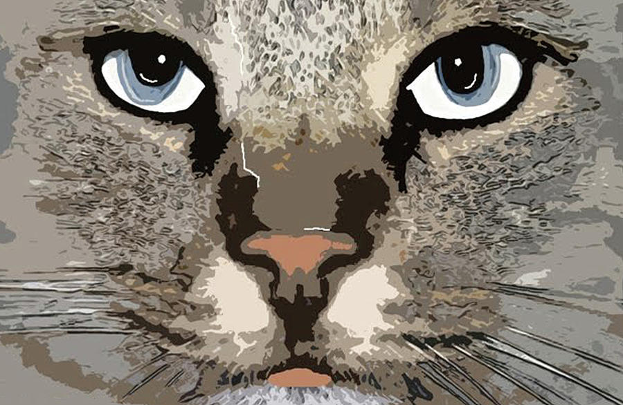 Graphic Illustration Photograph - Cat by Cynthia Powell