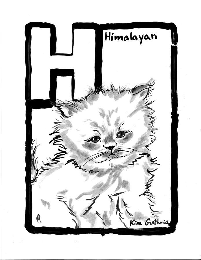 Cat Drawing Himalayan Painting