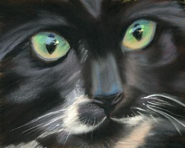Cat Painting - Cat-eyes by Elizabeth Jones