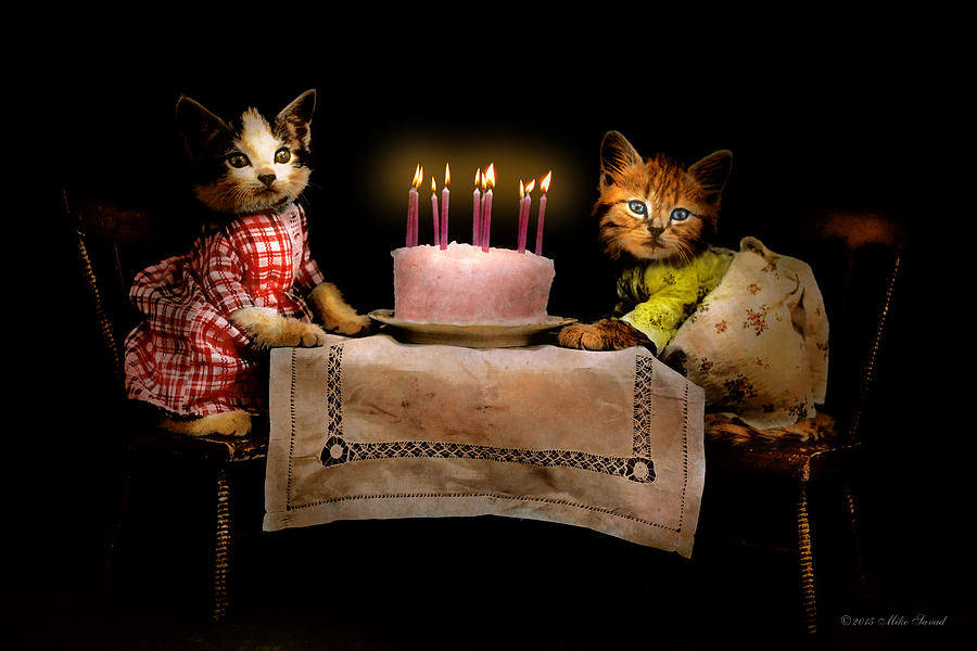 Cat Photograph - Cat - Its Our Birthday - 1914 by Mike Savad
