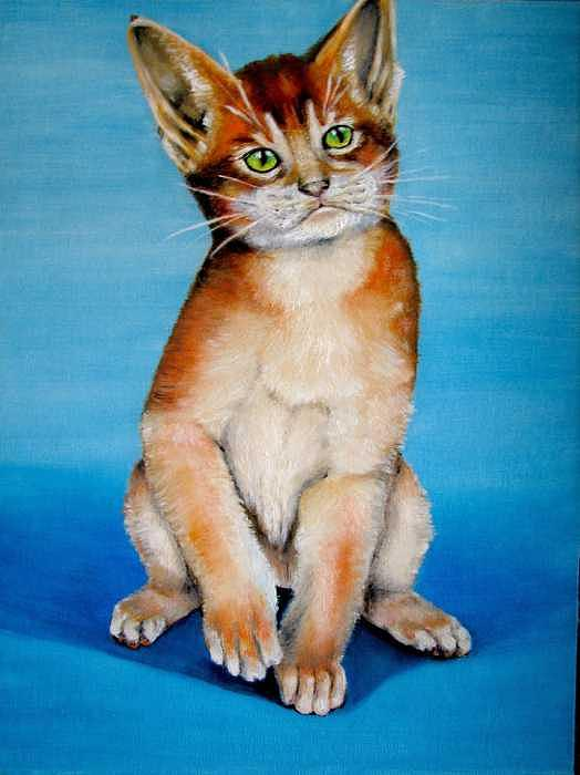 Cat Painting - Cat Original Oil Painting by Natalja Picugina