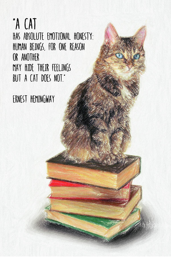 Cat Quote by Ernest Hemingway by Zapista OU