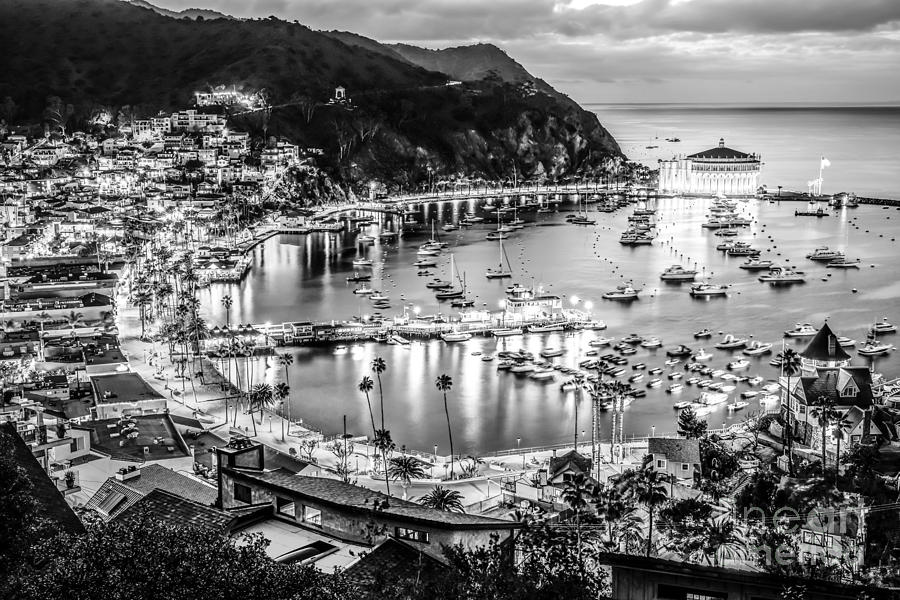 America Photograph - Catalina Island Avalon Bay Black and White Picture by Paul Velgos