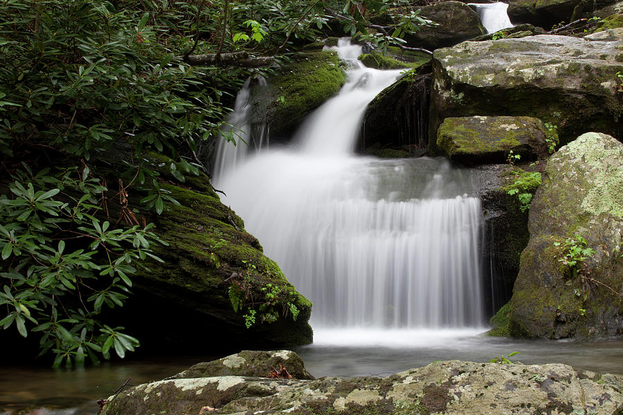 Streams Photograph - Catawba Headwaters Two by Forrest N Camellia