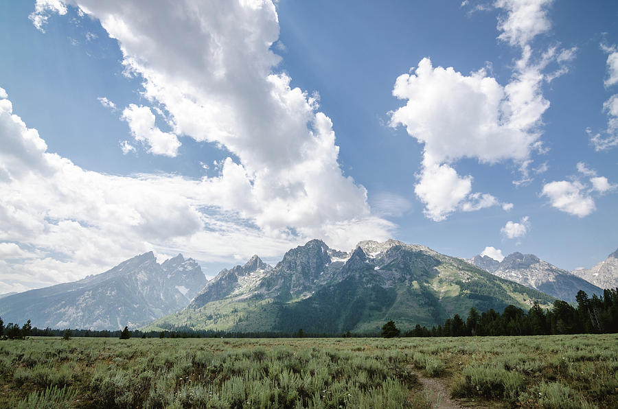Grand Tetons Photograph - Cathedral Group No.2 by Margaret Pitcher