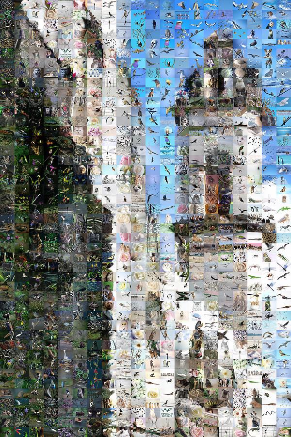 Havana Digital Art - Cathedral I by Gilberto Viciedo