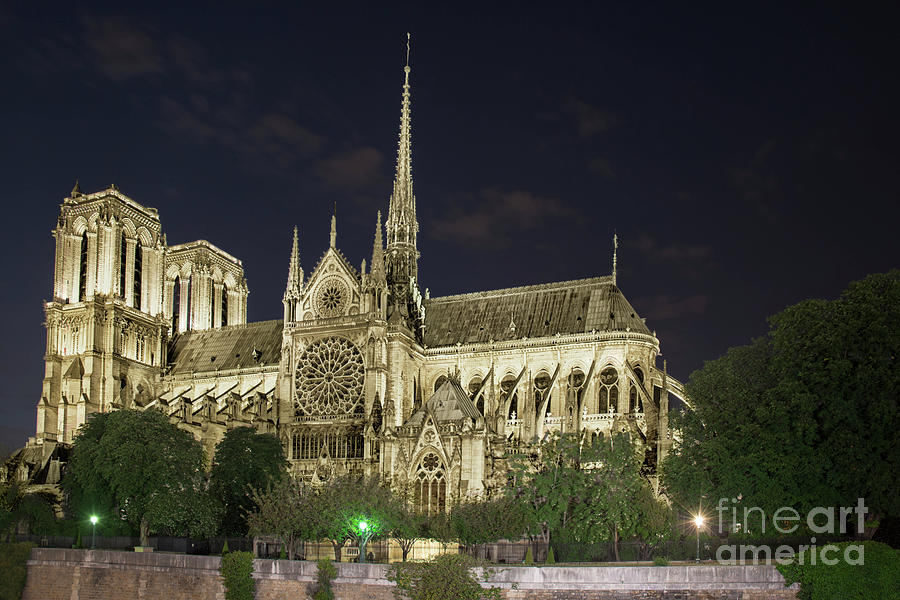 Cathedral Notre Dame de Paris by Tim Mulina