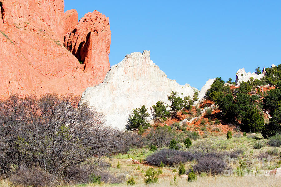 Cathedral Rock In Garden Of The Gods Park Photograph