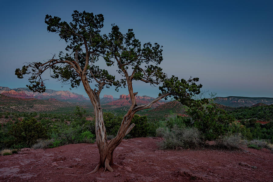Cathedral Rock Overview by Gary Lengyel