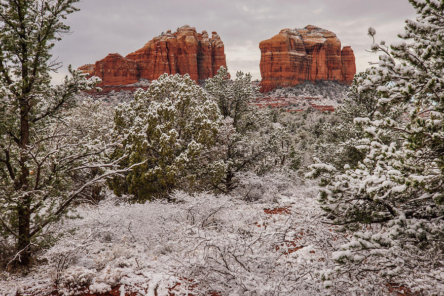 Cathedral Rocks in Snow by Lee Kirchhevel