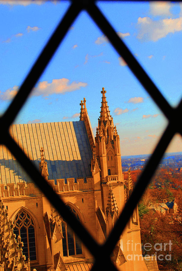 Washington Photograph - Cathedral Sky by Jost Houk