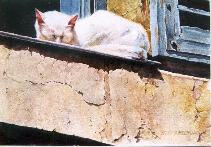 Cat Painting - Catnap by Marion  Hylton