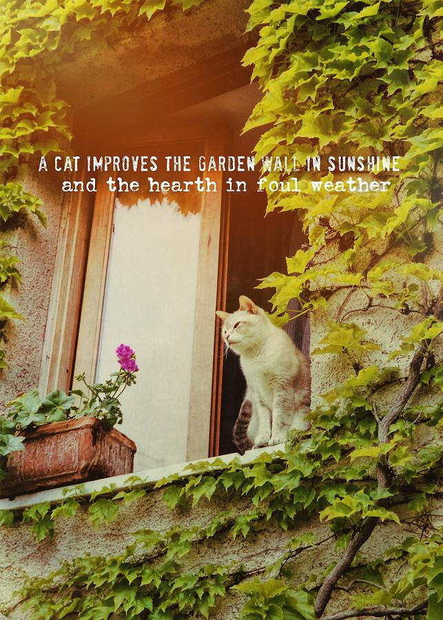 Cat Photograph - Cats Eye View Quote by JAMART Photography