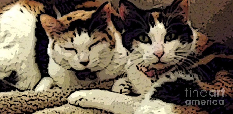 Cats In Bed Photograph - Cats In Bed by KR Moehr
