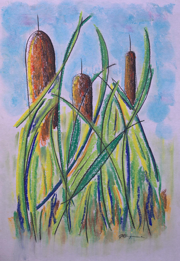 Cattails Drawing - Cattails #5 by J R Seymour