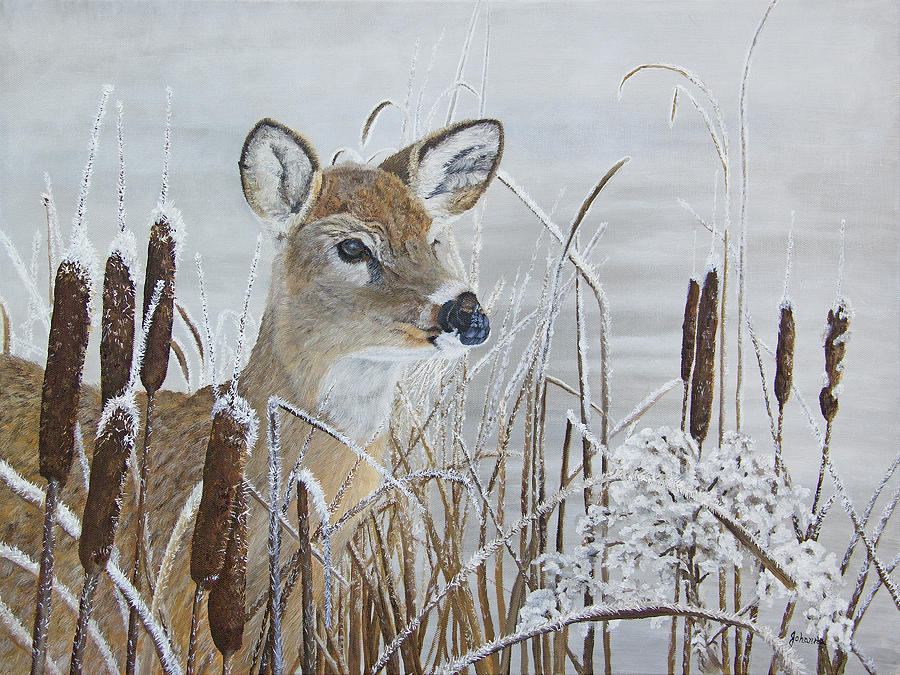 Caught Her Attention - Whitetail Doe by Johanna Lerwick