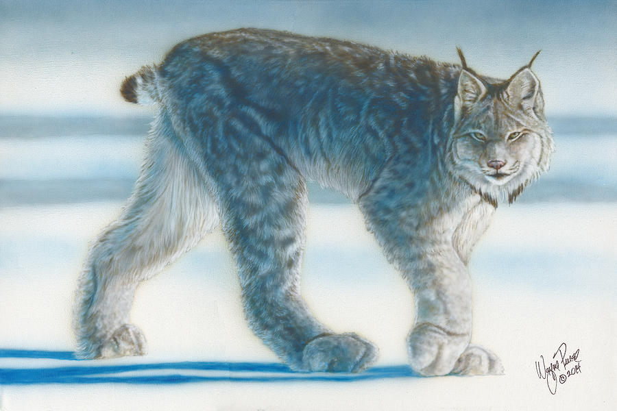Animal Painting - Caught In The Open II by Wayne Pruse