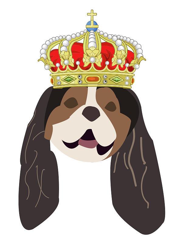 Cavalier King Charles by Caroline Elgin