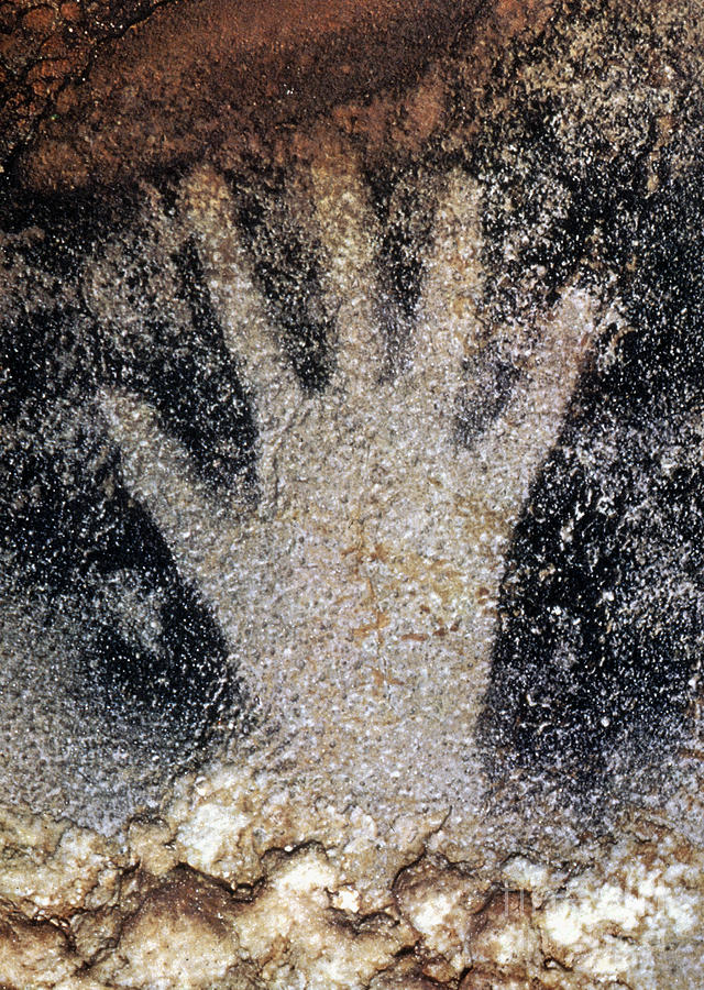 Cave Photograph - Cave Art: Pech Merle by Granger