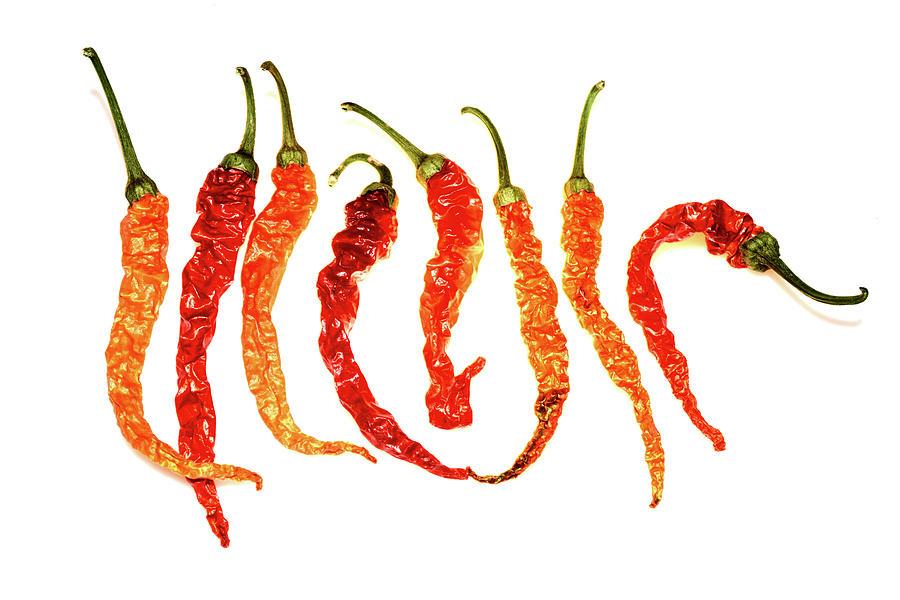 Chili Photograph - Cayenne Peppers by Paulina Roybal